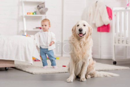 Photo for Adorable child and golden retriever in children room - Royalty Free Image