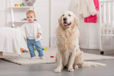 Photo for Adorable kid and cute golden retriever in children room - Royalty Free Image