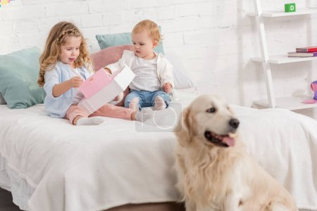 Photo for Adorable sisters playing on bed, fluffy golden retriever sitting near bed in children room - Royalty Free Image