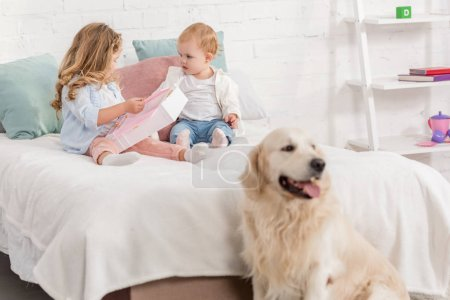 Photo for Adorable kids playing on bed, golden retriever sitting near bed in children room - Royalty Free Image