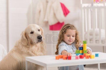 Photo pour Adorable enfant qui joue avec des cubes éducatifs, moelleux retriever doré assis près de la table dans la chambre d'enfant - image libre de droit