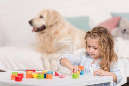 Foto de Enfoque selectivo de adorable niño jugando con cubos educativos, perro perdiguero de oro acostado en cama en la habitación de los niños - Imagen libre de derechos