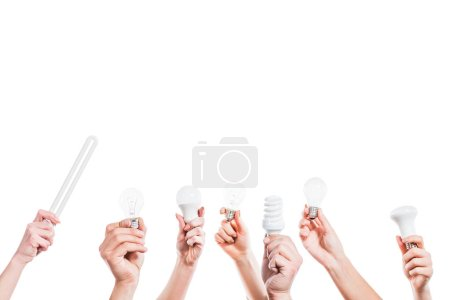 cropped view of people hands holding fluorescent lamps  in hands isolated on white, energy efficiency concept
