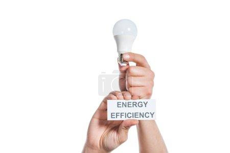 Photo pour Vue recadrée de l'homme tenant lampe fluorescente et carte de papier avec lettrage isolé sur blanc, concept d'efficacité énergétique - image libre de droit