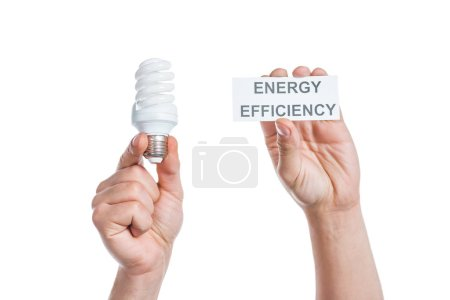 cropped view of male hands holding paper card with lettering and fluorescent lamp isolated on white, energy efficiency concept