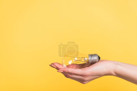 cropped view of woman holding led lamp isolated on yellow, energy efficiency concept