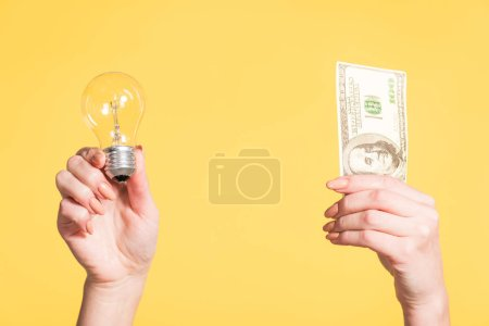 Photo for Cropped view of female hands holding led lamp and hundred dollar banknote in hands isolated on yellow, energy efficiency concept - Royalty Free Image