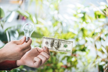 Photo for Cropped view of man holding hundred dollar banknote and led lamp in hands, energy efficiency concept - Royalty Free Image