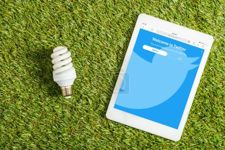 Photo for Top view of fluorescent lamp near digital tablet with twitter app on screen on green grass, energy efficiency concept - Royalty Free Image
