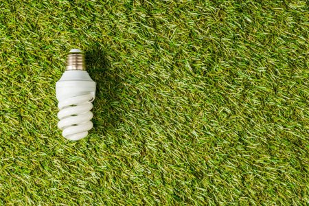 top view of fluorescent lamp on green grass, energy efficiency concept