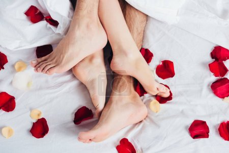 partial view of barefoot couple lying on soft white bedding with red petals