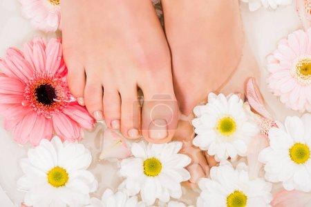 Photo pour Vue du dessus des pieds femelles dans l'eau avec des fleurs - image libre de droit