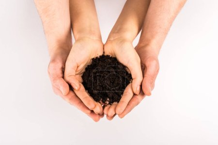 Photo for Cropped view of woman and man holding soil isolated on white, earth day concept - Royalty Free Image