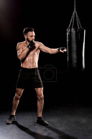 Photo for Bearded boxer exercising with punching bag  on black background - Royalty Free Image