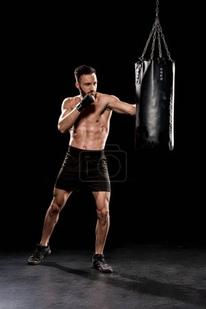 Photo for Handsome bearded boxer exercising with punching bag  on black background - Royalty Free Image