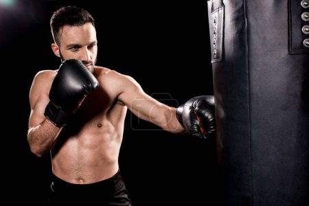 Photo for Shortless sportsman wearing boxing gloves hitting punching bag isolated on black - Royalty Free Image