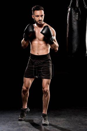 Photo for Handsome athlete wearing boxing gloves standing in boxing pose on black background - Royalty Free Image