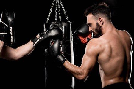 Photo pour Beau boxer, se battre avec l'homme dans le poinçonnage gants isolés sur fond noir - image libre de droit