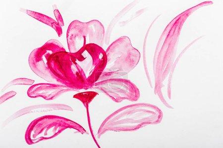 Foto de Vista superior de flor rosa Acuarela sobre fondo blanco - Imagen libre de derechos