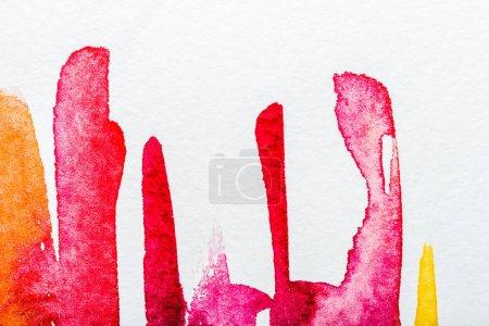 Photo pour Vue de dessus des déversements de roses, orange, jaunes et rouges sur papier blanc - image libre de droit