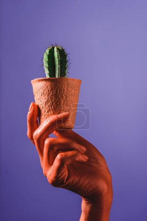 Photo for Partial view of coral colored female hand with cactus in coral flower pot on violet background, color of 2019 concept - Royalty Free Image