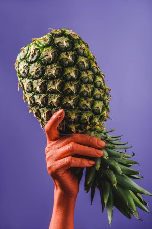 Photo for Ripe pineapple fruit in coral colored female hand on violet background, color of 2019 concept - Royalty Free Image