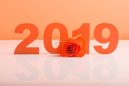 Photo for Coral paper cut 2019 numbers and rose flower on white surface, color of 2019 concept - Royalty Free Image