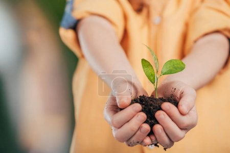selective focus of child holding young plant on blurred background, earth day concept