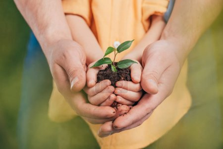 selective focus of man holding kid hands with young plant on blurred background, earth day concept