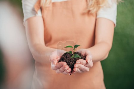 selective focus of woman holding young green plant on blurred background, earth day concept