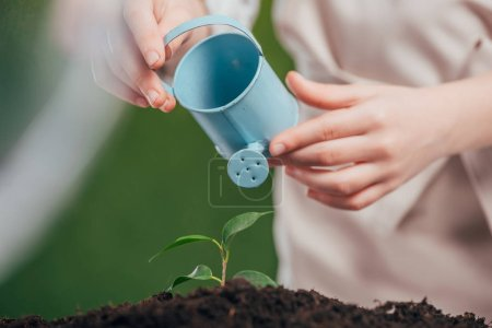 Foto de Enfoque selectivo de cabrito con regadera de juguete azul y joven planta verde sobre fondo borroso, concepto de día de la tierra - Imagen libre de derechos
