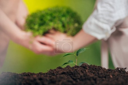 selective focus of growing young plant, and woman and child holding plant on blurred background, earth day concept