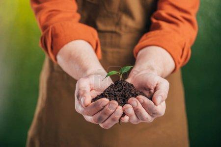 foyer sélectif de l'homme tenant jeune plante verte sur fond flou, concept de jour de la terre