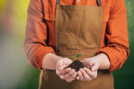 cropped view of man holding young green plant on blurred background, earth day concept