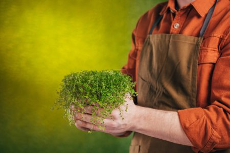 Photo for Cropped view of man holding green plant on blurred background, earth day concept - Royalty Free Image
