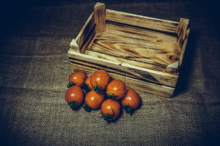 Fresh tomatoes and old burnt wooden crate or box with sackcloth background.Vintage and retro effect added.