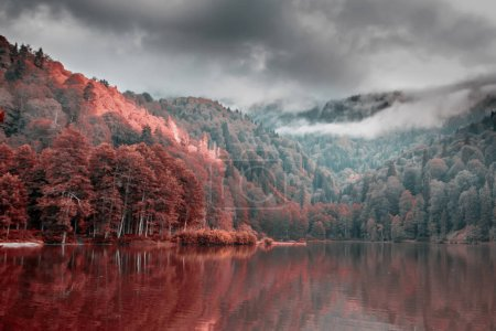Soft autumn landscape view of Karagol (Black lake) a popular destination for tourists,locals,campers and travelers in Eastern Black Sea,Savsat, Artvin, Turkey.