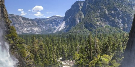 Scenic view of trees and cliff at Yosemite Falls