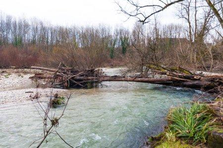 Photo pour Une petite rivière dans la région de Français Savoy, séparant les villes d'Echelles et d'entre-deux-guiers, un après-midi d'hiver autour de Noël. - image libre de droit