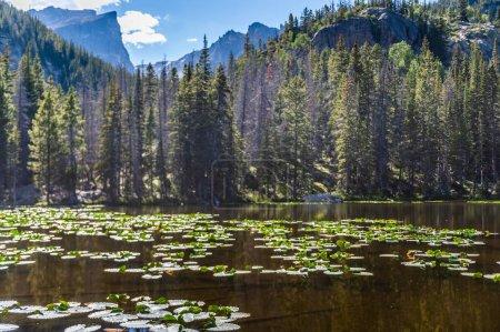 Photo pour Survol du lac Nymph, Colorado par un après-midi ensoleillé dans le parc national des Rocheuses . - image libre de droit