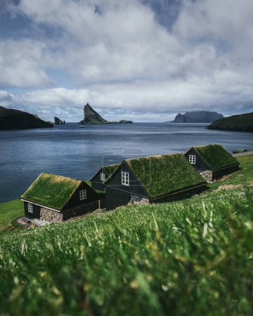 Black wooden houses with a green grass roof. Houses by the ocean overlooking the cliffs of the Faroe Islands. Beautiful summer landscape. Vertical photo.