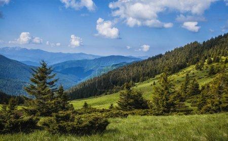 Photo pour Prairie de montagne verdoyante avec chaîne de montagnes dans le fond. - image libre de droit
