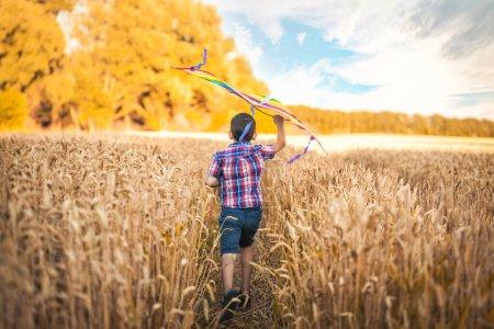 Photo pour Petit garçon en chemise à carreaux courant avec cerf-volant sur le champ de blé le jour d'été dans le parc. vue arrière - image libre de droit