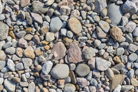 Photo pour Des cailloux sur le rivage. Pierres rondes sur la côte - image libre de droit
