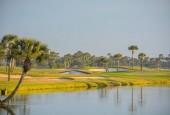 Palm trees on Lake Vedra. Ponte Vedra Beach, Florida