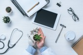 cropped image of male doctor with prosthetic arm holding potted plant at table with medical tools and digital tablet