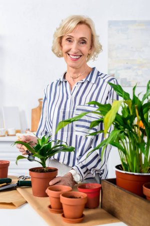beautiful senior woman smiling at camera while working with beautiful potted plants