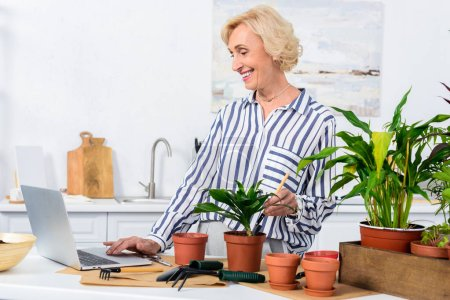 smiling senior woman using laptop and cultivating potted plants at home