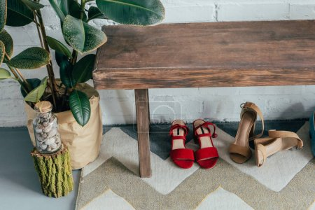 different shoes under wooden bench in corridor at home, potted ficus on floor