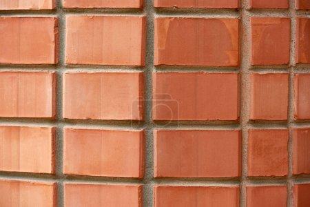 vue plein cadre rouge tanné fond mur texturé brique